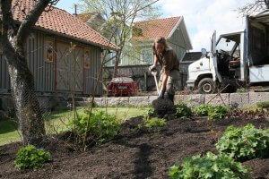 Trädgårdsarbete